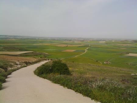 Cammino per le Tierras de Campos noto come il Granaio di Spagna.