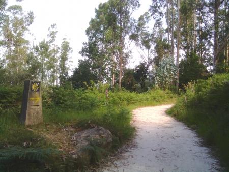 Lungo il cammino della prima tappa a Finisterre