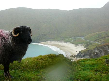 Spiaggia Achill Island, Irlanda