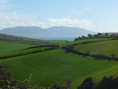 Prateria Irlanda
