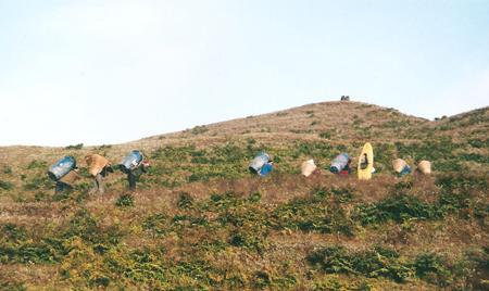 Il gruppo, Nepal