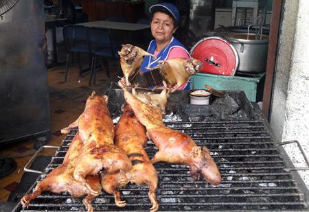 Cuys, Tipica comida Ecuadoriana