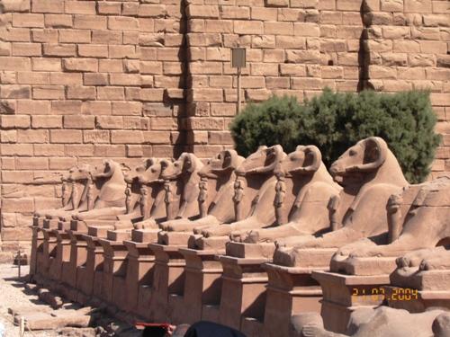 Valle Arieti, Egitto