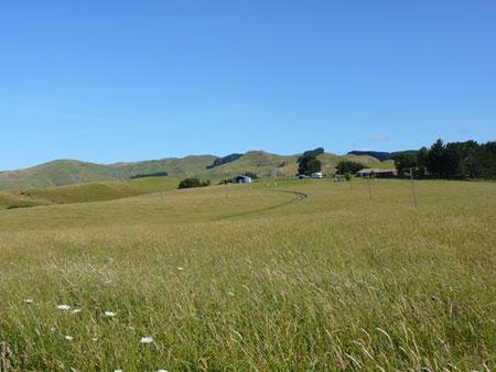 Raglan Nuova Zelanda